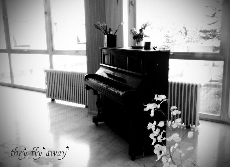 Mi Piace Chopin