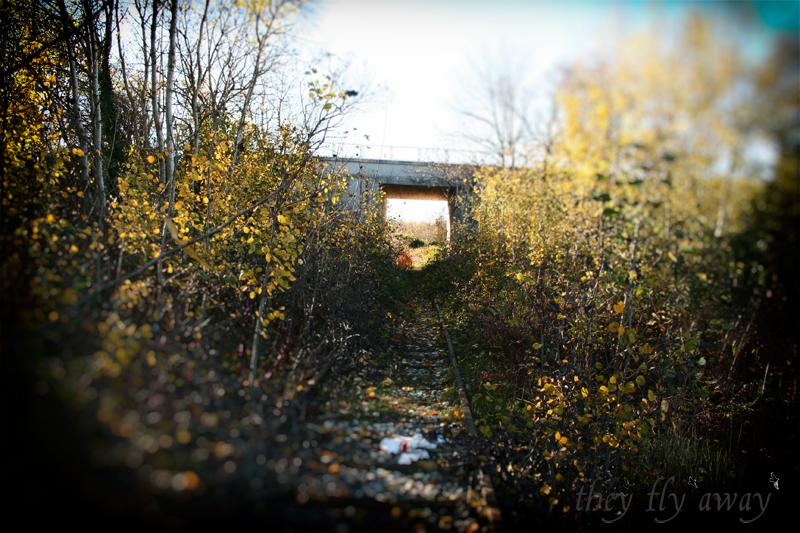 Tunnel ferrovia Alfa Romeo